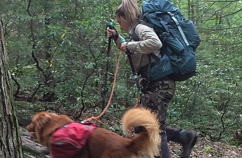 Woman with hiking backpack walking on wooded trail with brown dog wearing red pack on a leash