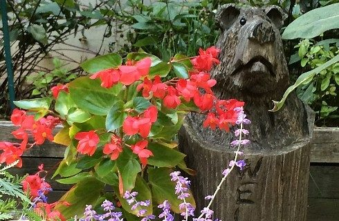 Green plants with orange and purple flowers outside next to a wooden stump carved in the shape of a bear's head