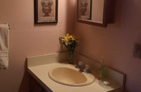 Single sink vanity wth glass soap dish, vase of yellow flowers and mirrored cabinet above