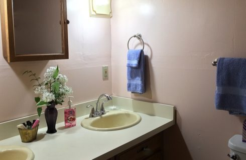Cream bathroom countertop with two sinks, vase of white flowers and basket of toiletries, and one mirrored cabinet above